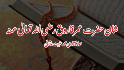 مولانا قاری محمد حنیف ملتانی